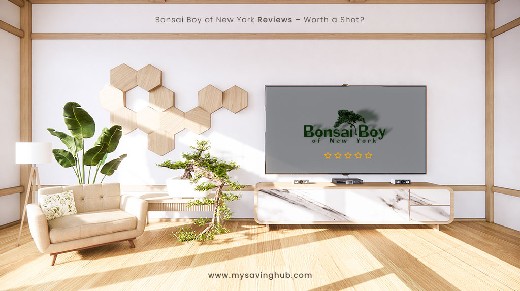 Bonsai Boy of New York Reviews – Worth a Shot?