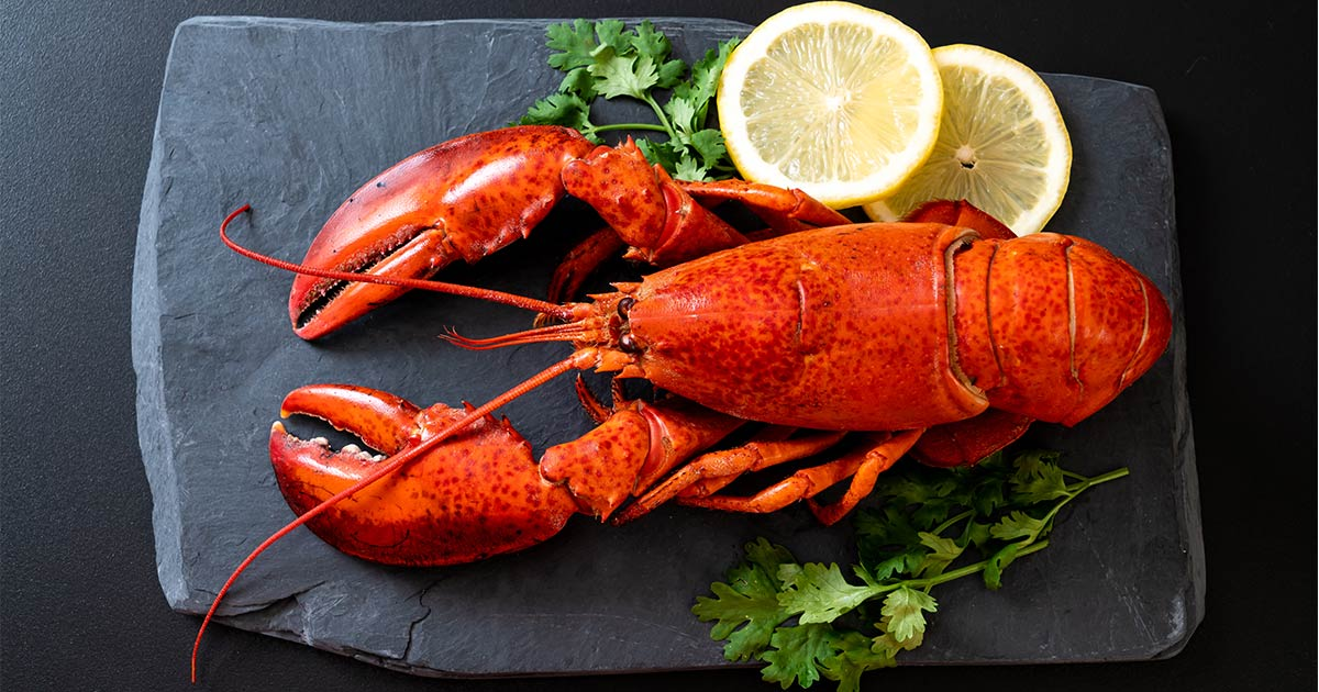 red lobster sea food fest